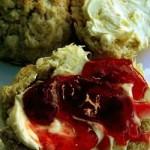 Scones med clotted cream och sylt (bild från: Wikipedia)