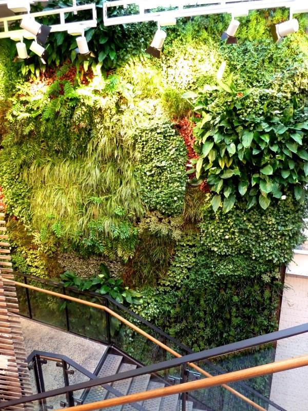 Den gröna väggen hos Anthropologie på Regents street (foto från Biotecture som gjort väggen)
